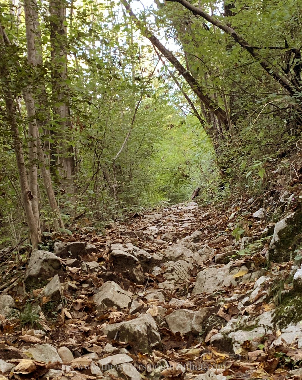 Autumn Trekking Monte Faeit