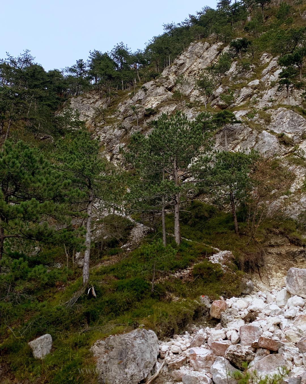 Sentiero Sant'Ilario lungo il torrente Cornons