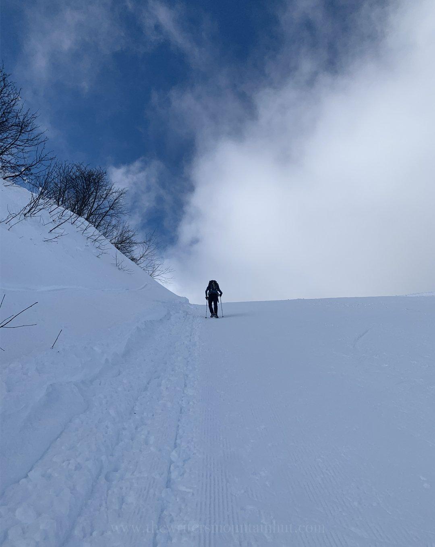 Snowy slopes on Monte Zoncolan, Friuli-Venezia Giulia, Italy